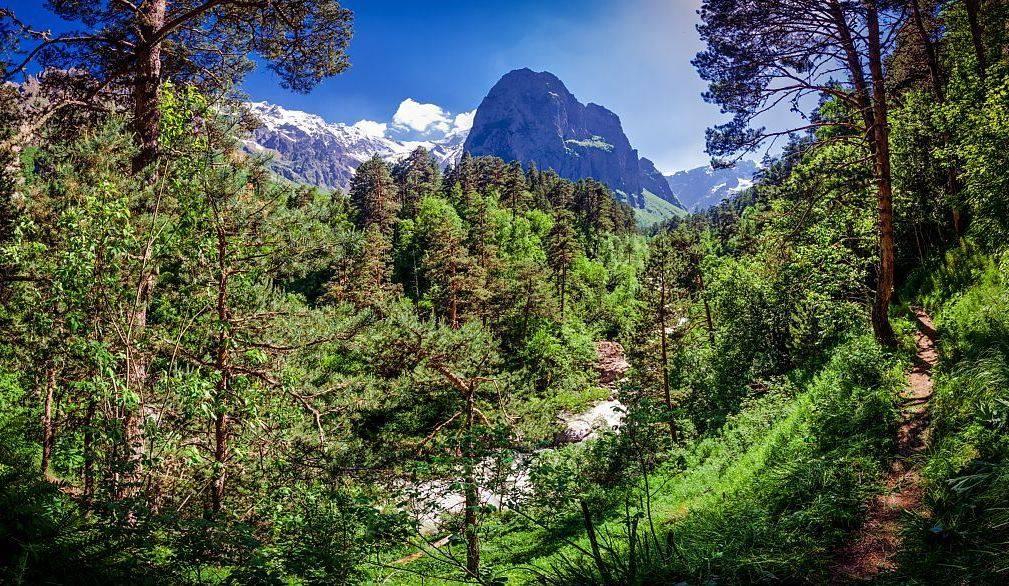 Фото Цейское ущелье в Северной Осетии