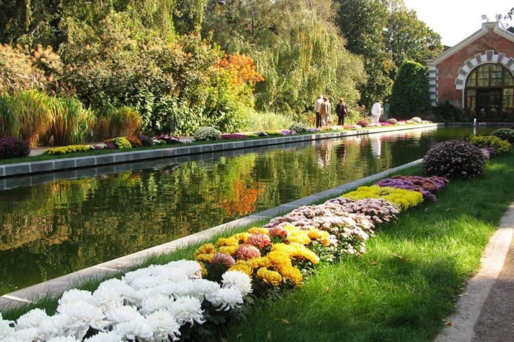 Ботанический сад Москва фото