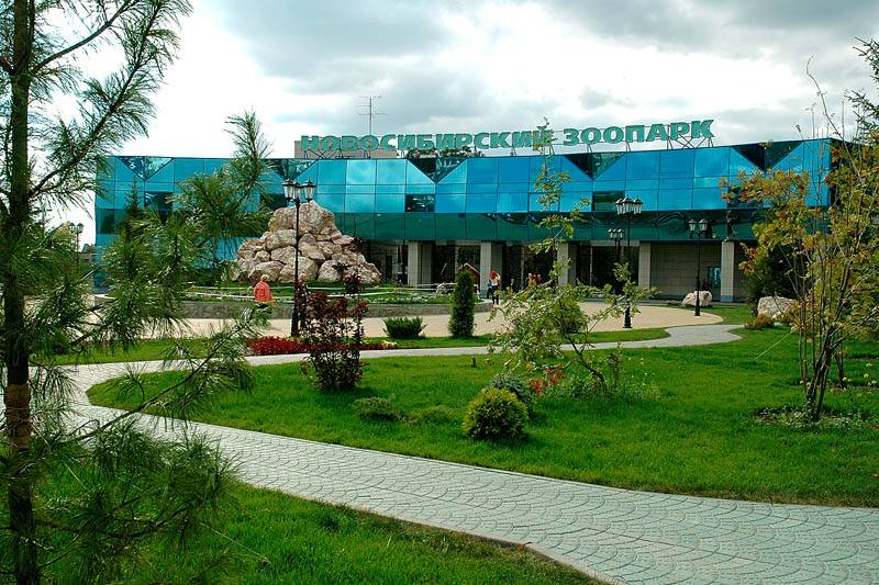 Новосибирский зоопарк фото